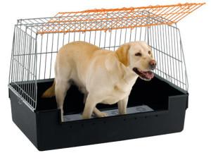Покупаем клетку для собаки